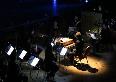 Die Zauberflöte 2016 - Das Orchester